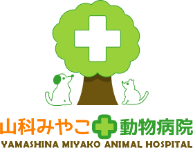 山科みやこ動物病院